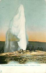 A GEYSER IN ACTION