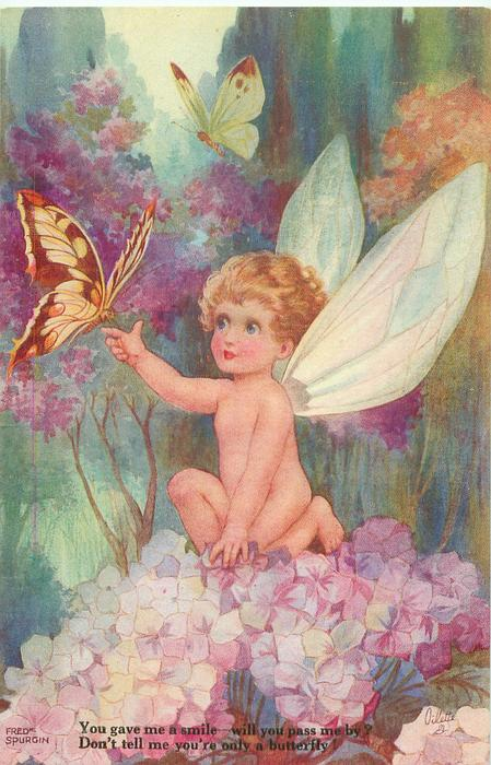 YOU GAVE ME A SMILE - WILL YOU PASS ME BY? DON'T TELL ME YOUR ONLY A BUTTERFLY!