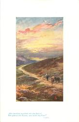 man & two cattle on path, heather around, many colours in sky