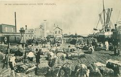 ON THE LEVEE - SHIPPING COTTON