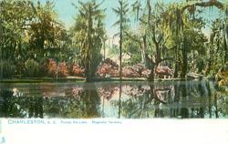 ACROSS THE LAKE. - MAGNOLIA GARDENS