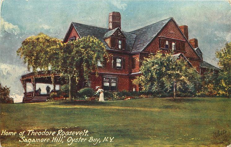 HOME OF THEODORE ROOSEVELT, SAGAMORE HILL, OYSTER BAY, N.Y.