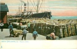 SHIPPING COTTON