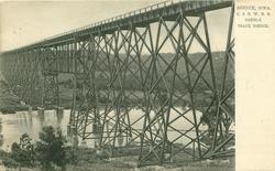C. & N. W.R.R. DOUBLE TRACK BRIDGE