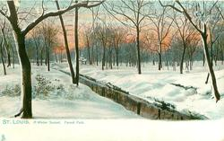A WINTER SUNSET, FOREST PARK