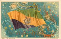 CARNIVAL FLAG  no jester, fireworks