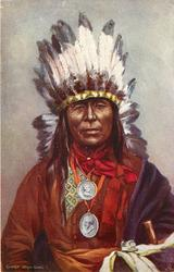 CHIEF IRON OWL