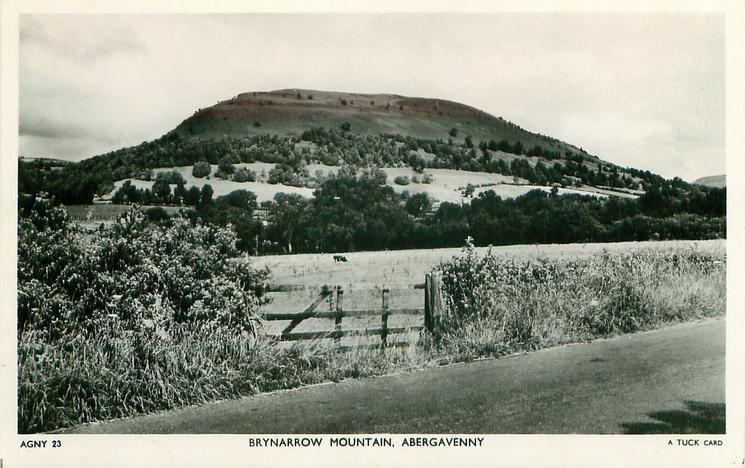 BRYNARROW MOUNTAIN