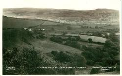 COOMBE VALLEY, ASKERSWELL DOWNS