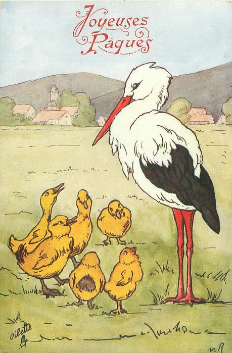 tall stork looks down at three ducklings & three chicks