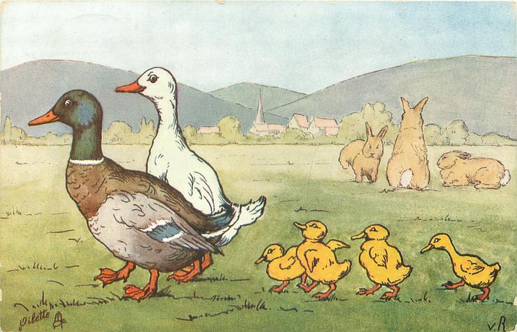 two ducks walk left followed by four ducklings, three rabbits across meadow