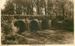 THE MASSEREENE BRIDGE