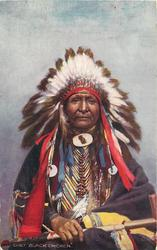 "CHIEF ""BLACK CHICKEN"""