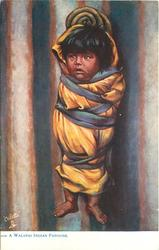 A WALAPAI INDIAN PAPOOSE