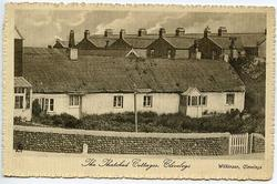 THE THATCHED COTTAGES