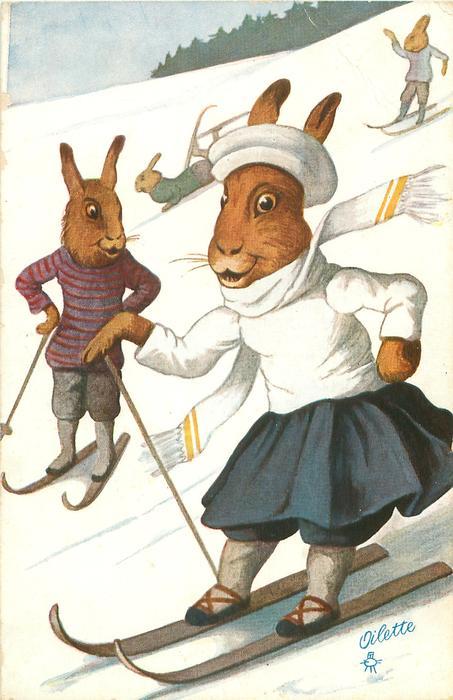 rabbits ski down hill