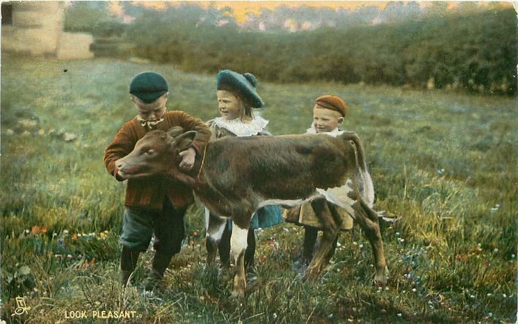 LOOK PLEASANT  three children & calf
