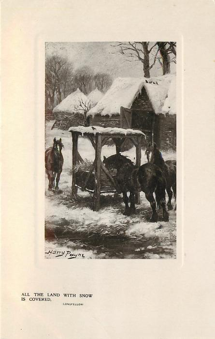 ALL THE LAND WITH SNOW IS COVERED  horses outside barn gather near hay feeder