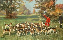 huntsman in red holds up dead fox over pack of hounds, man in black looks on