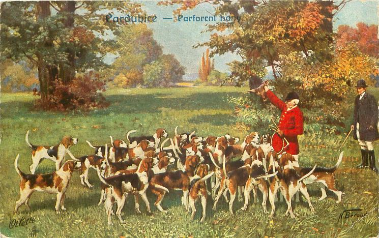 huntsman in red hold up dead fox over pack of hounds, man in black looks on