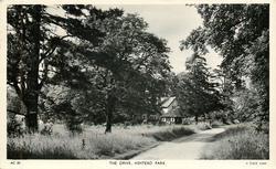 THE DRIVE, ASHTEAD PARK