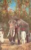 H.H. THE MAHARAJAH OF MYSORE'S ELEPHANT