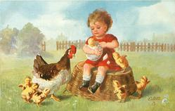 child sits on on basket holding very large egg with small chick in it, hen observes, chicks around