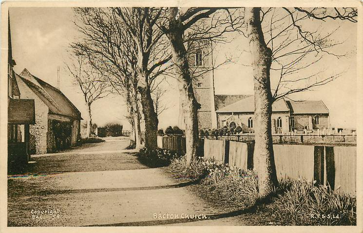 BACTON CHURCH  line of trees