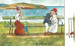 A MANX CAT  severe spinster looks over her book at cuddling couple