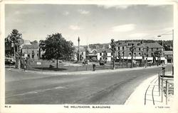 THE WELLMEADOW