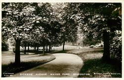 DICKENS' AVENUE. MAYER PARK.