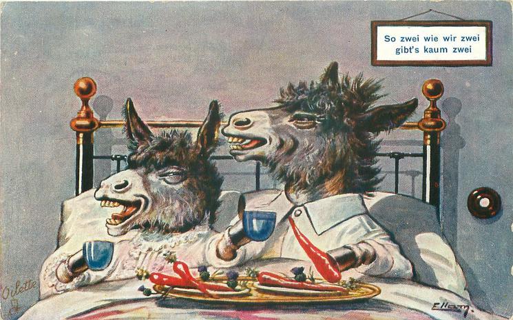 SO ZWEI WIE WIR ZWEI GIBT'S KAUM ZWEI  2 donkeys