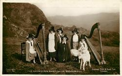 THE SNOWDONIA HARP CHOIR