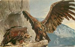 two eagles at nest on on rocky ledge, mountains in background