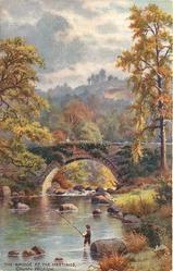 THE BRIDGE AT THE MEETINGS
