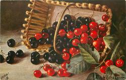 black & red cherries falling from basket on its side