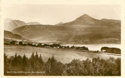 GOAT FELL FROM LAMLASH HILL