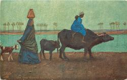 ON THE BANKS OF THE NILE  buffalo ridden by two children, calf, woman carrying pot on head & goat all move right