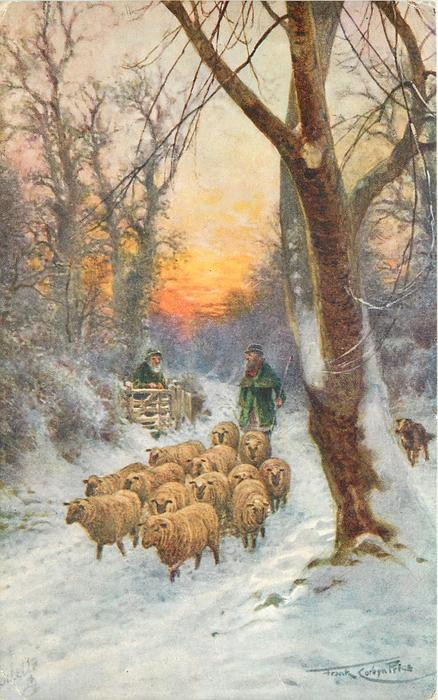 shepherd in bright green driving sheep along road in snow, greeting old man at gate, red sunset