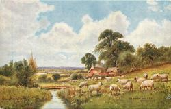 THE AVON VALLEY, RINGWOOD