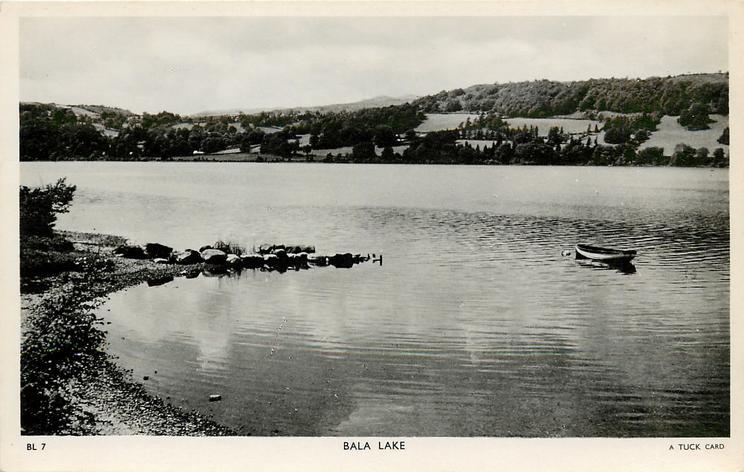 BALA LAKE  close up, row boat
