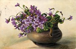 violets in squat grey brown pot with handle