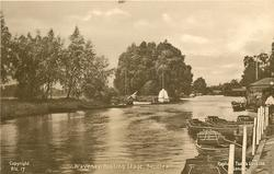 WAVENEY BOATING STAGE