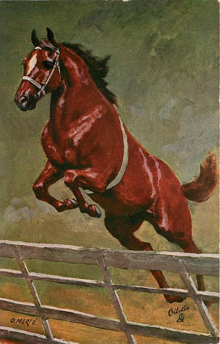 brown horse jumping over fence or gate