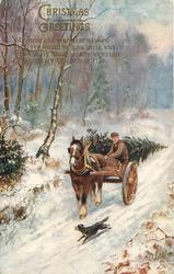 horse drawn  going left with man and christmas tree inside, dog running to left