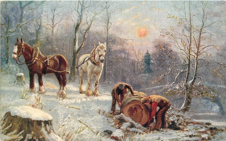 two men chaining felled tree trunk, two horses standing by in snow