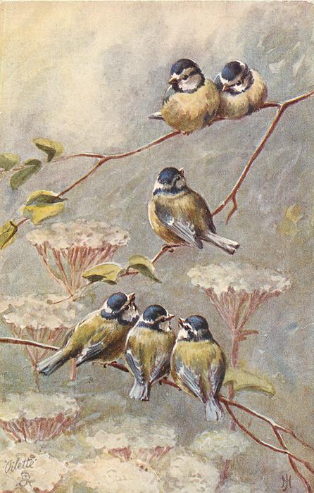 six tits in tree, two on upper limb, one on center limb, and three on lower limb