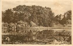 NESTING ON THE LAKE