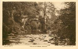 THE OLD IVY BRIDGE