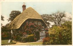 OLD THATCHED COTTAGE